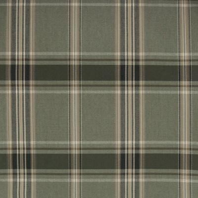 B1622 Thyme Fabric