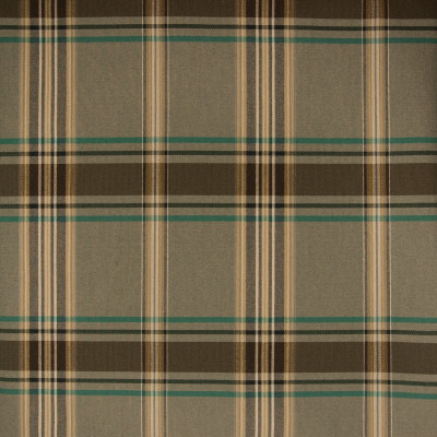 B1623 Agave Fabric