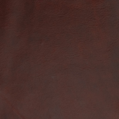 B1692 Latin Spice Fabric