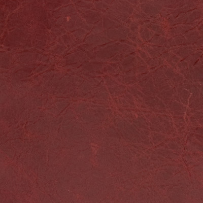 B1698 Salute Red Fabric