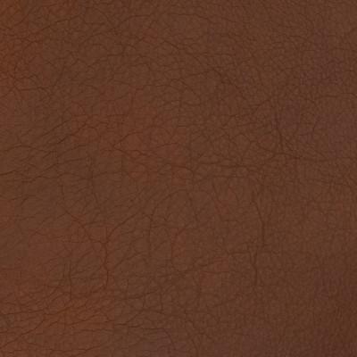 B1704 Tigers Eye Fabric