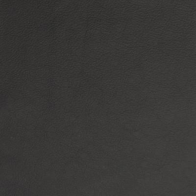 B1707 Midnight Fabric