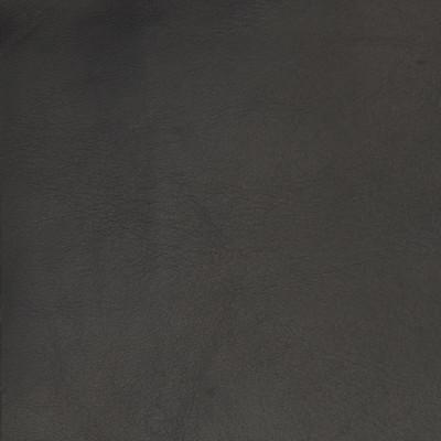 B1708 Night Owl Fabric