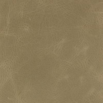 B1738 Macaroni Fabric