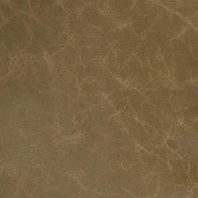 B1739 Thyme Fabric