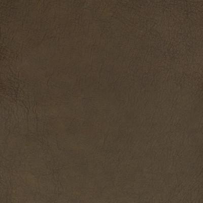 B1743 Olivyne Fabric