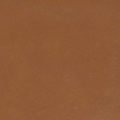B1749 Cider Fabric