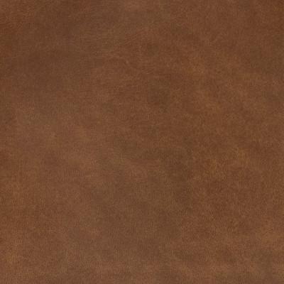 B1752 Simba Fabric