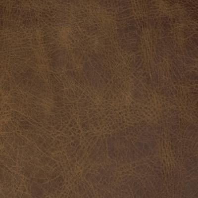 B1755 Wigwam Fabric