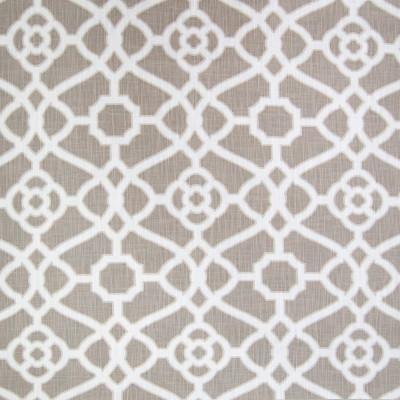 B1802 Dove Fabric