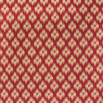 B2106 Poppy Fabric