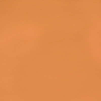 B2372 Allante Butterscotch Fabric