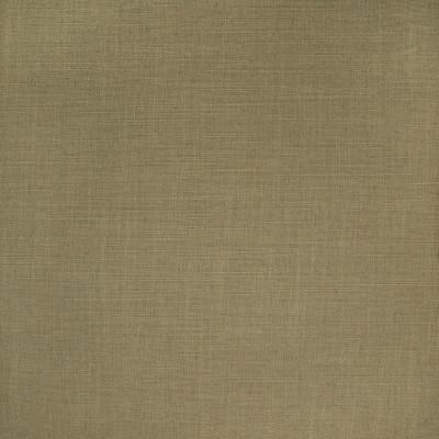 B2413 Olive Fabric