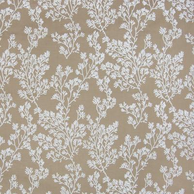 B2861 Fawn Fabric