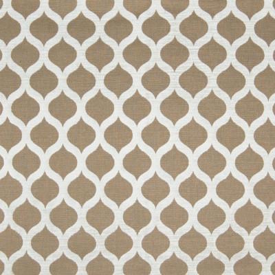 B2864 Fawn Fabric