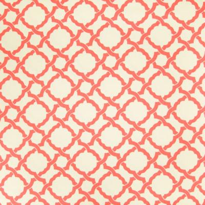 B3197 Coral Fabric