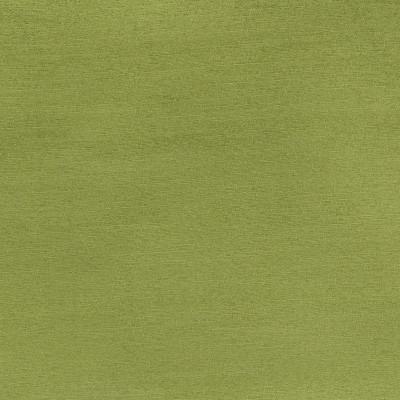 B3538 Fern Fabric