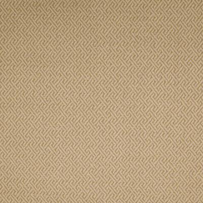 B3745 Sisal Fabric