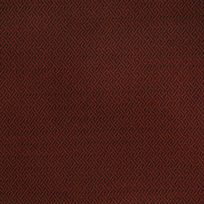 B3757 Lacquer Fabric
