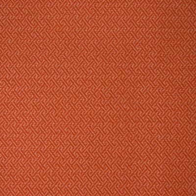 B3761 Tangerine Fabric