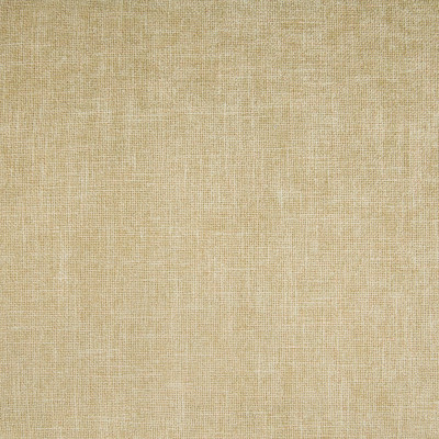 B3795 Fawn Fabric