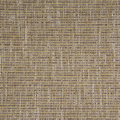 B3848 Squash Fabric