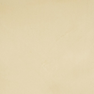 B3881 Cream Fabric