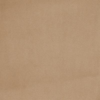 B3887 Raffia Fabric