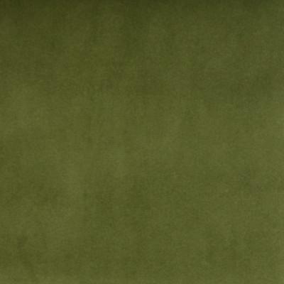 B3906 Kiwi Fabric