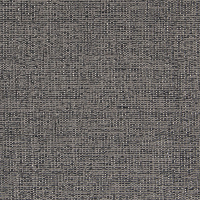 B3976 Chrome Fabric