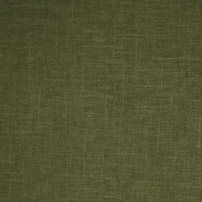 B4020 Sage Green Fabric