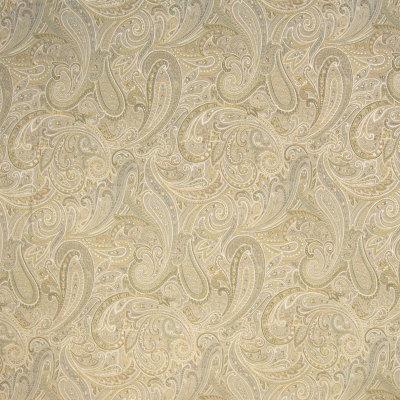 B4101 Platinum Fabric