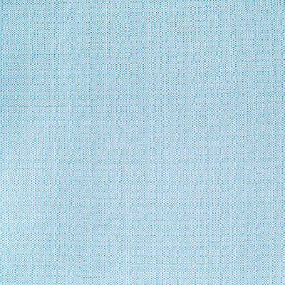 B4135 Caribe Fabric