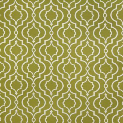 B4144 Tendril Fabric