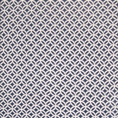 B4161 Nautical Fabric