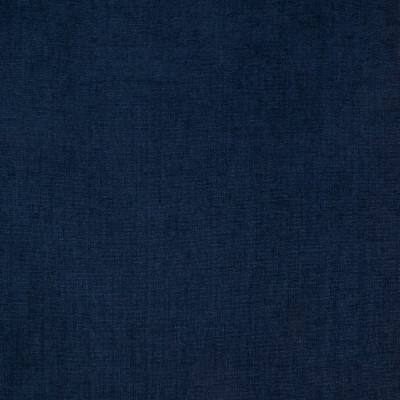 B4218 Blueberry Fabric