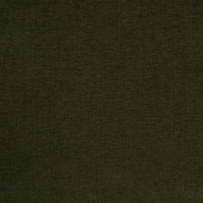 B4221 Evergreen Fabric