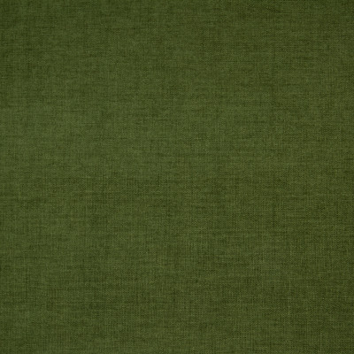 B4222 Forest Fabric