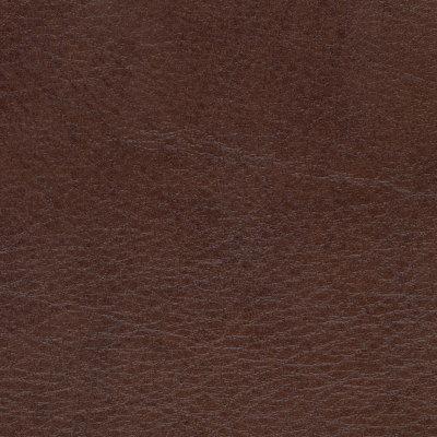 B4250 Allegro Briarwood Fabric