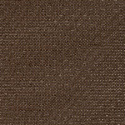 B4251 Sequins Chocolate Fabric