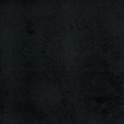 B4313 Black Fabric