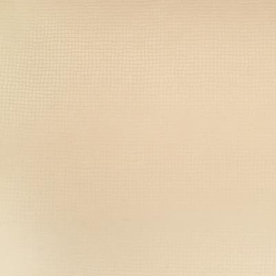 B4500 Champagne Fabric