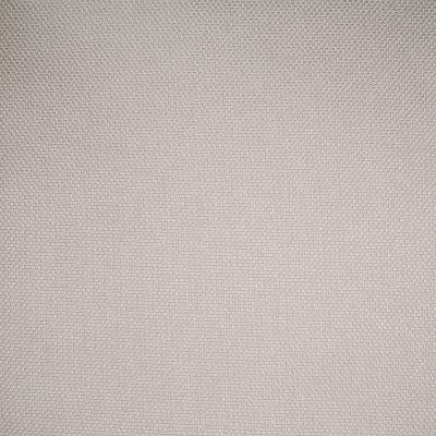 B4556 Vanilla Fabric