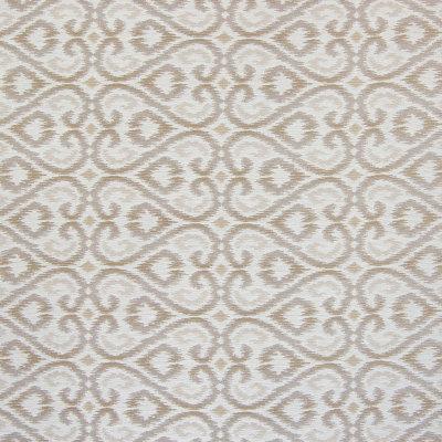 B4568 Mushroom Fabric