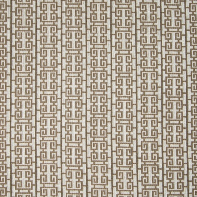 B4578 Ginger Fabric