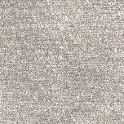 B4590 Birch Fabric