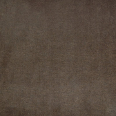 B4619 Chocolate Fabric
