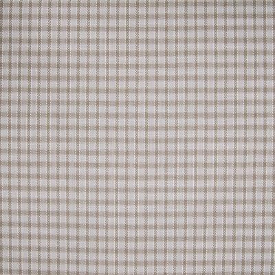 B4657 Pecan Fabric