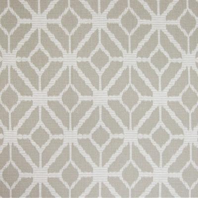 B4659 Opal Fabric