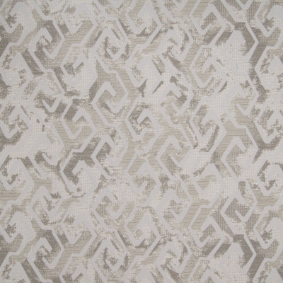 B4663 Cashew Fabric